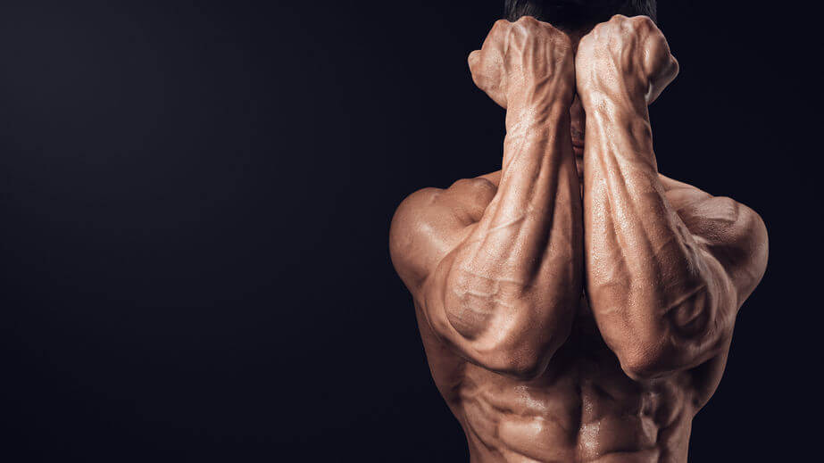 how volume builds strength forearms