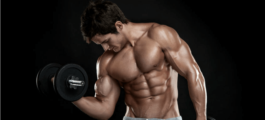 how many calories should I eat to build muscle