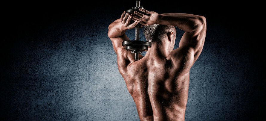 The Best Tricep Workout and 10 Best Tricep Exercises