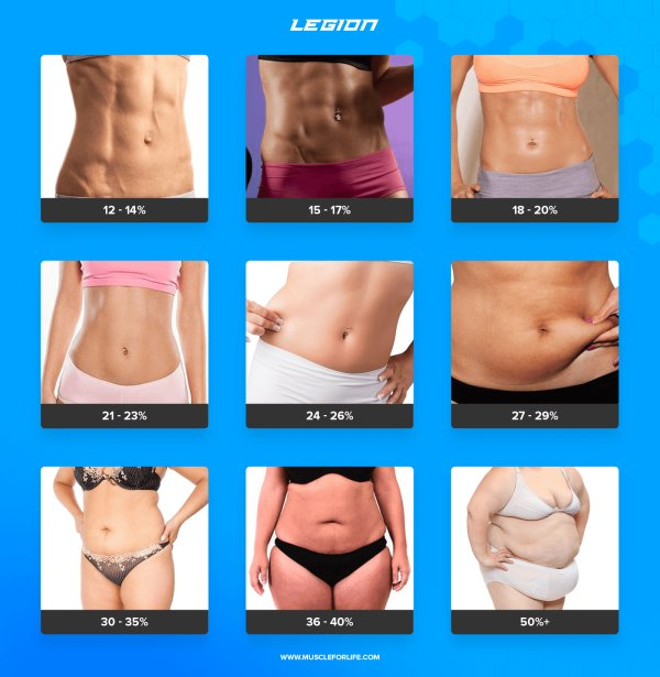 body composition chart women