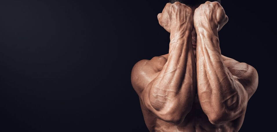 forearm-workouts-4
