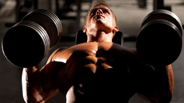 upper chest dumbbell bench press