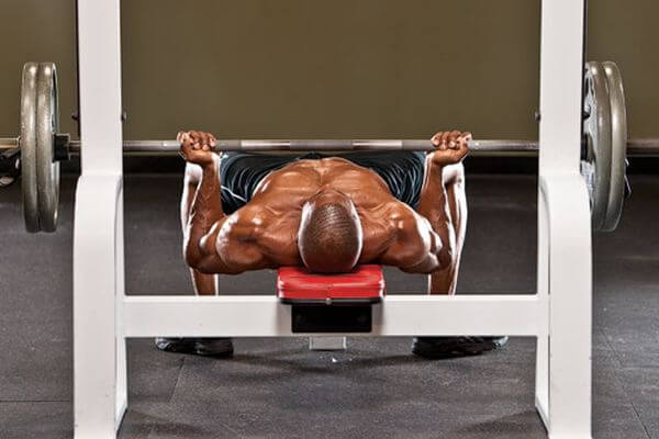 upper chest reverse grip bench press