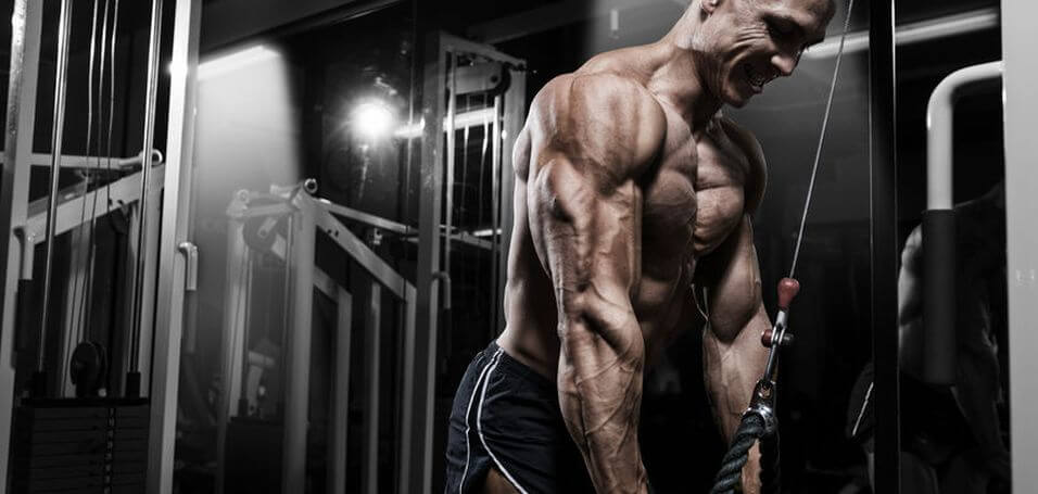 The 6 Best Triceps Workouts For Bigger Stronger Arms