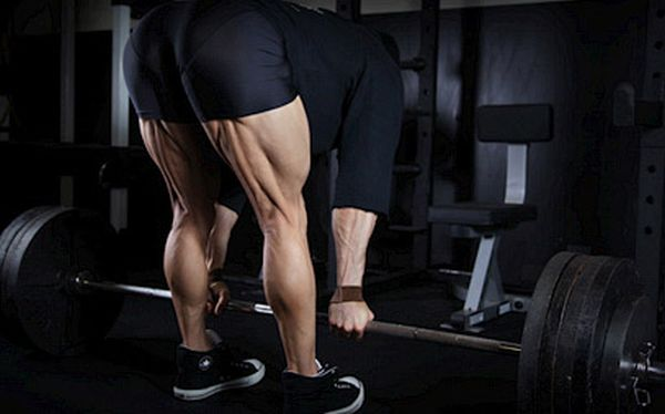build big hamstrings