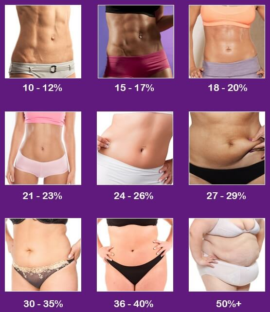 body fat percentage female
