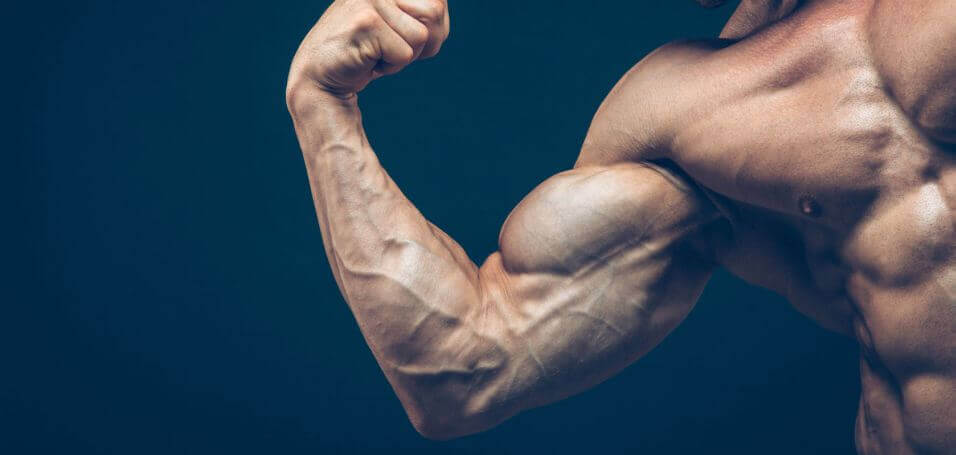 sore muscle muscle growth