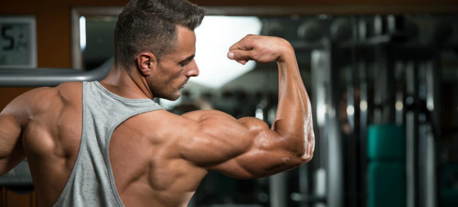 The Best Way to Stimulate Muscle Hypertrophy (Build Muscle)