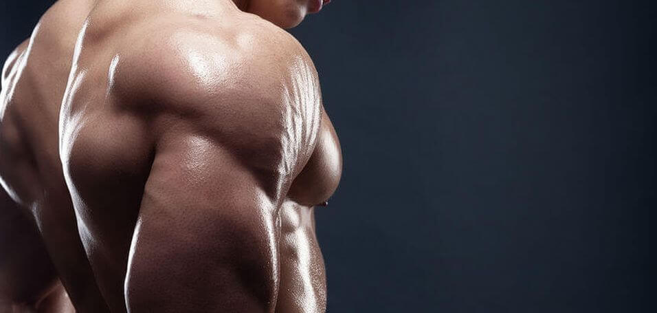 best back exercises bodybuilding