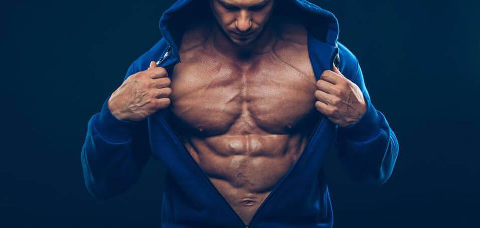 yohimbine bodybuilding