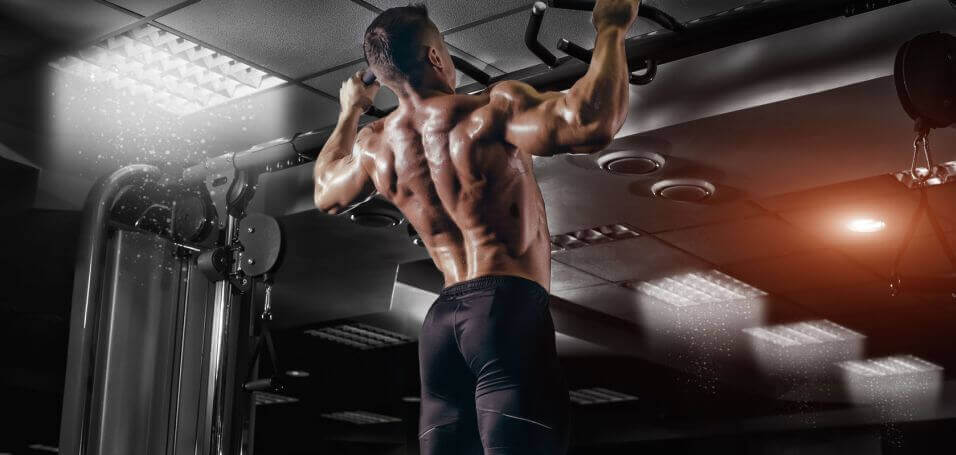 bodyweight pull-up