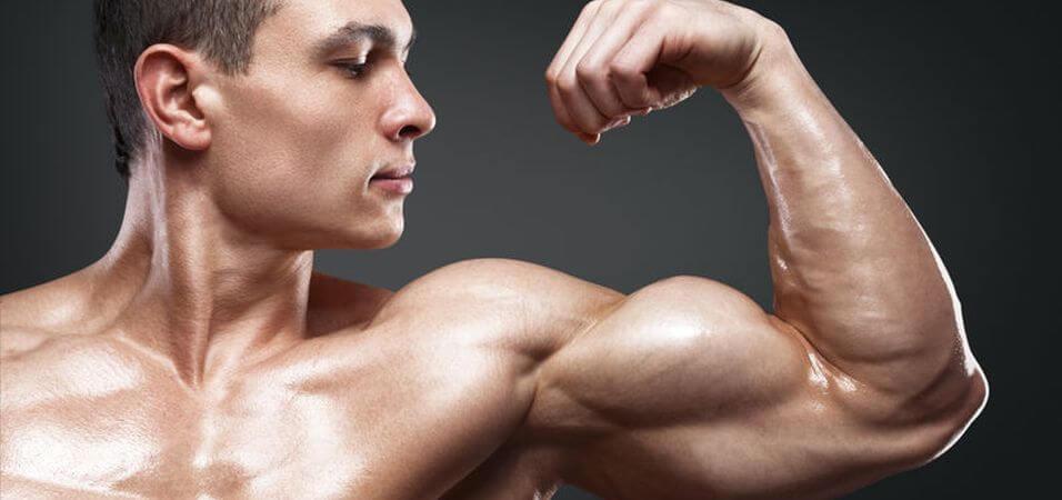 hard gainer diet tips