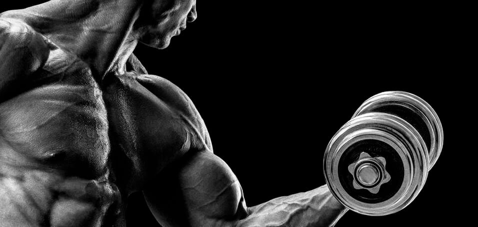 blood flow restriction training for arms