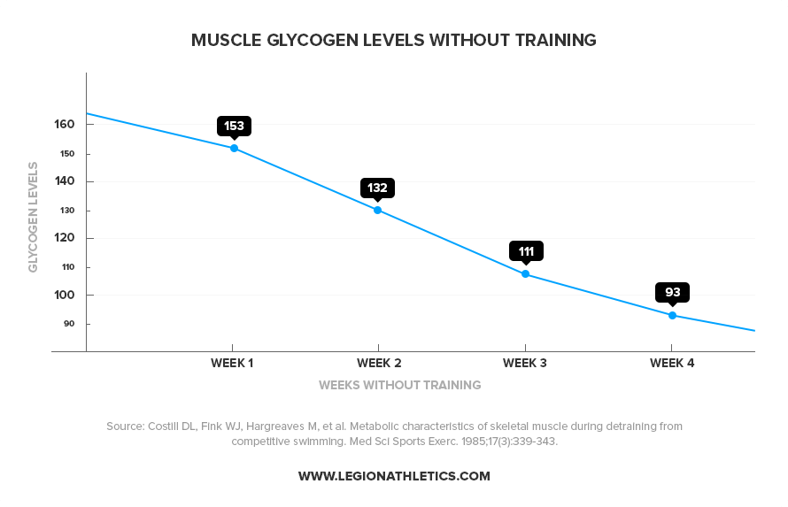 muscle glycogen levels