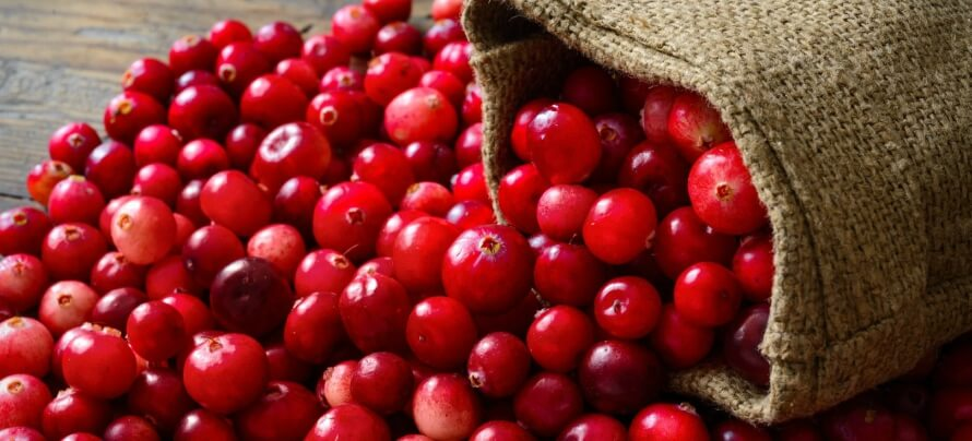 cranberries food supplement
