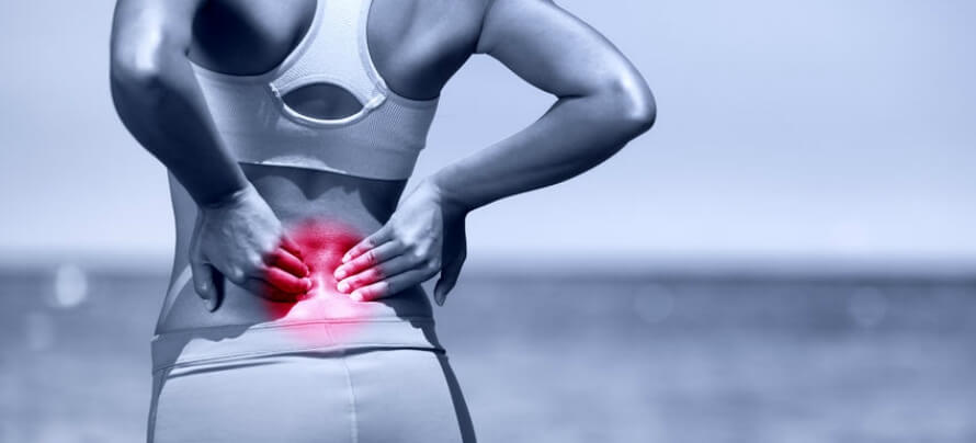 how do joint pain supplements work