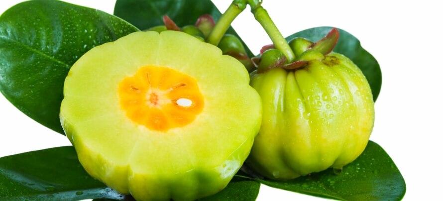 phoenix vs leanmode garcinia cambogia