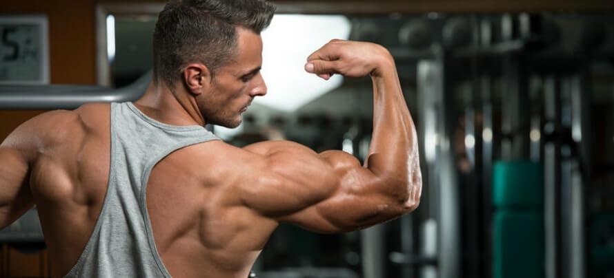 bmi chart muscle mass