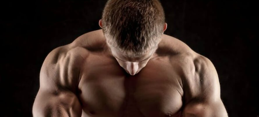 The 10 Best Exercises for Building Bigger & Stronger Traps (As Fast ...