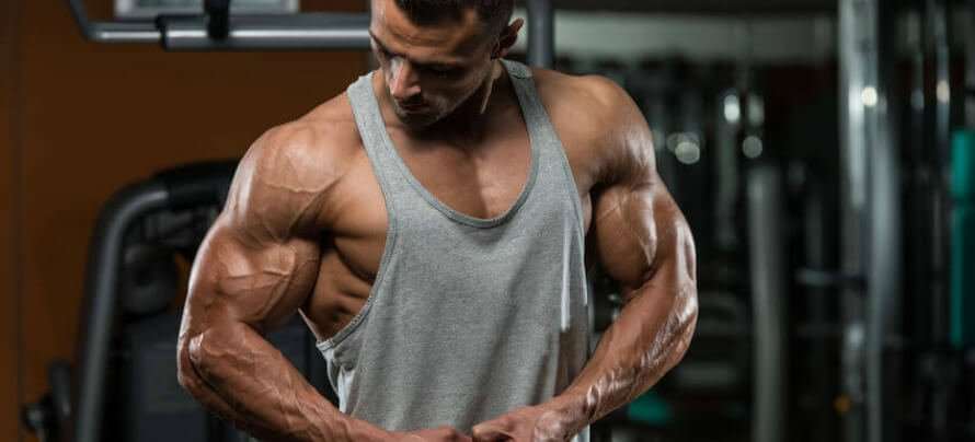 how many sets to build muscle