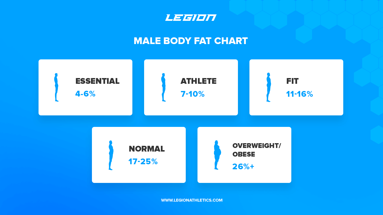 male body fat chart