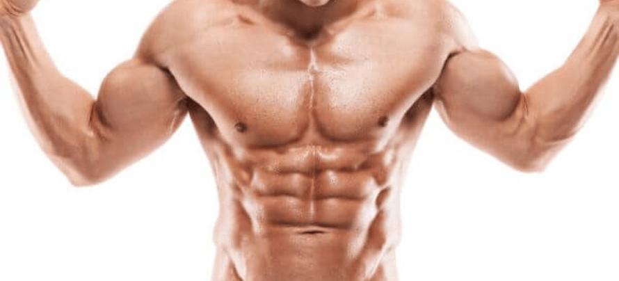 beta alanine benefits