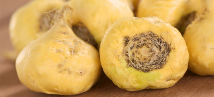 what is maca