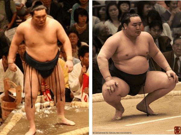 ffmi sumo wrestlers