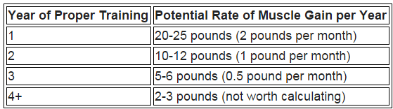 Here's How Much Muscle You Can Really Gain Naturally (with a Calculator)