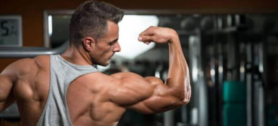 best shoulder exercises