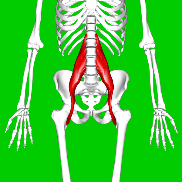 hip-flexor-tightness