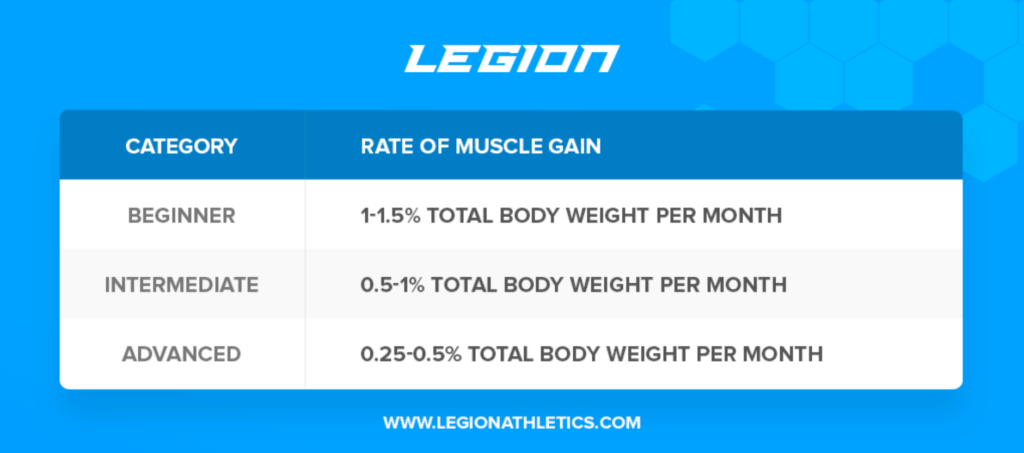 newbie gains rate of muscle gain