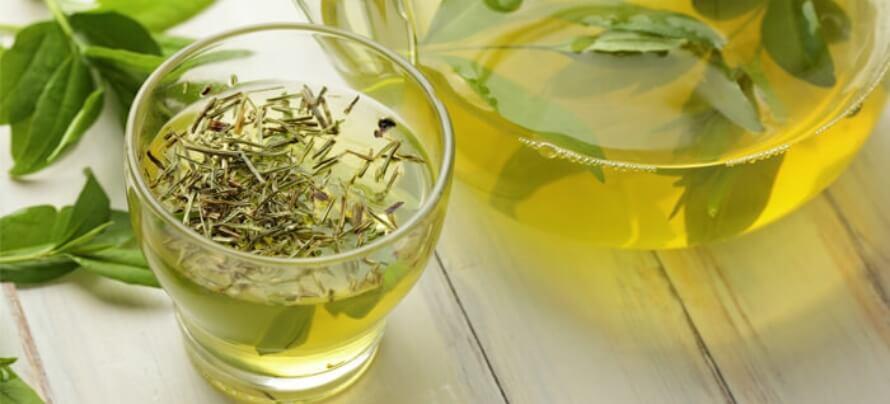 green tea (1)