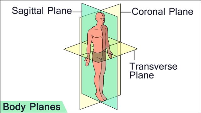 640-body-planes