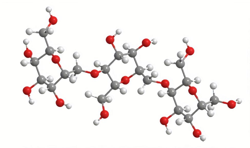 maltodextrin molecule