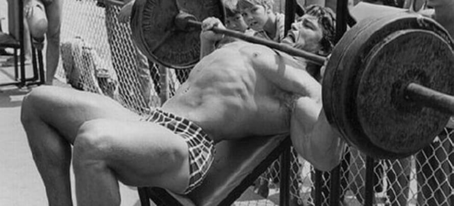 incline bench press muscles