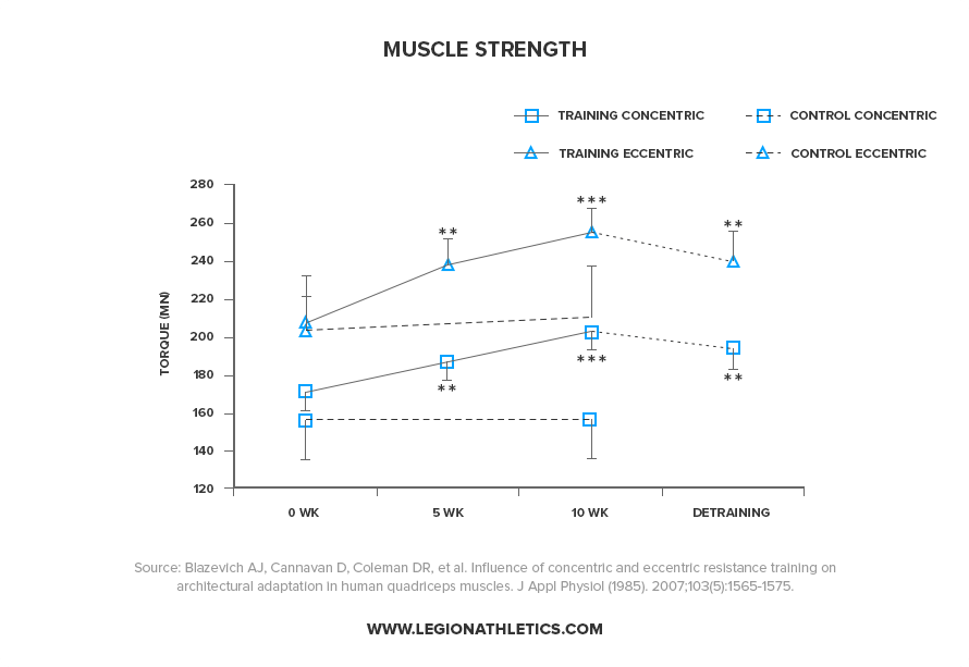 Muscle-Strength-After-30-Weeks-of-Not-Training