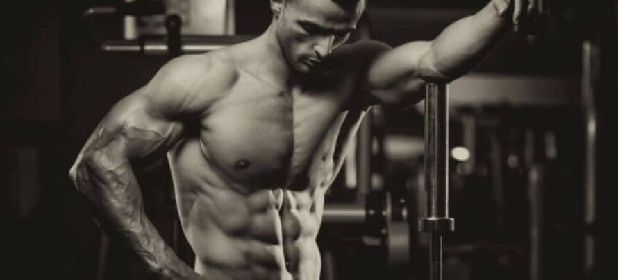 tdee-calculator-to-gain-muscle