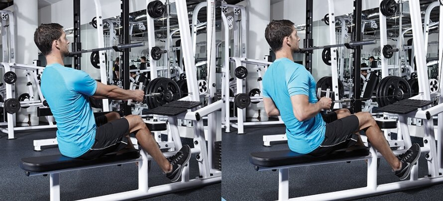 Seated Cable Row (1)