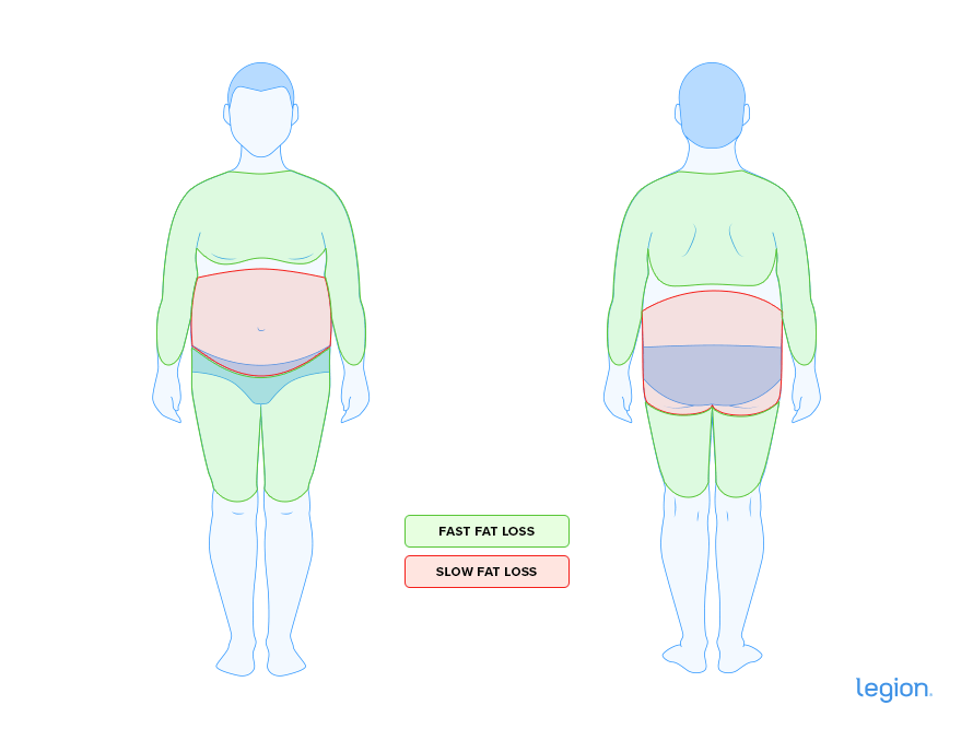 Slow-Fast-Fat-Loss-Male-Image (1)