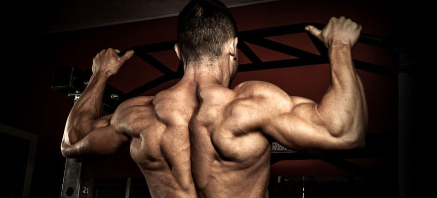 The Best Long Head Tricep Exercises for Mass & Hypertrophy | Legion